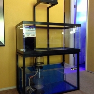 reef-tank-stand