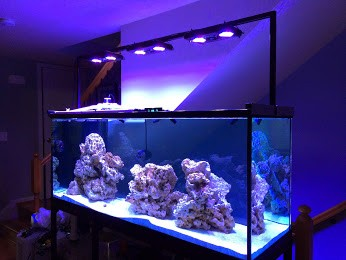 aquarium light framing